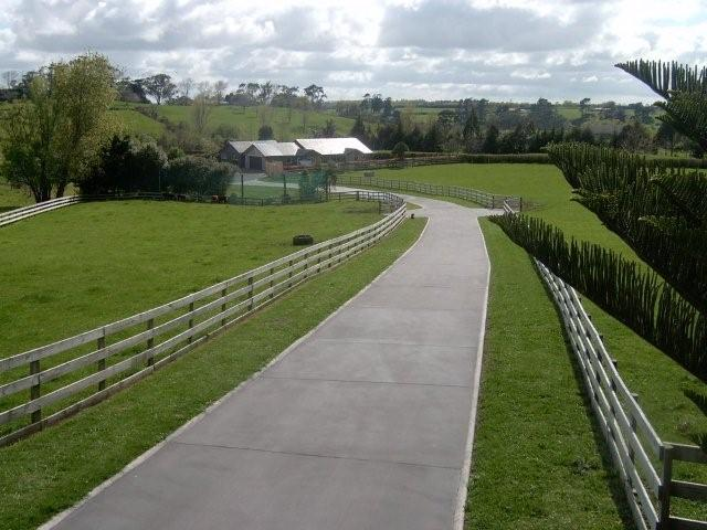 Concrete driveways auckland for How to pour a concrete driveway